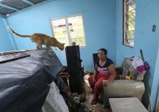 Maribel Valentin Espino sits in her hurricane-destroyed home in Montebello, Puerto Rico, Tuesday, Sept. 26, 2017. Five days after the Category 4 storm slammed into Puerto Rico, many of the more than 3.4 million U.S. citizens in the territory were still without adequate food, water and fuel. Flights off the island were infrequent, communications were spotty and roads were clogged with debris. Officials said electrical power may not be fully restored for more than a month. (AP Photo/Gerald Herbert)