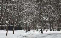 Snow coats trees and fences as residents clear sidewalks of snow Wednesday, Nov. 27, 2019, in St. Cloud, Minn. According to the National Weather Service, St. Cloud received four inches of snow overnight. (Dave Schwarz/The St. Cloud Times via AP)