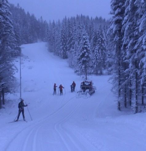 Frosta IL Ski sørger for flotte spor i den nye lysløypa