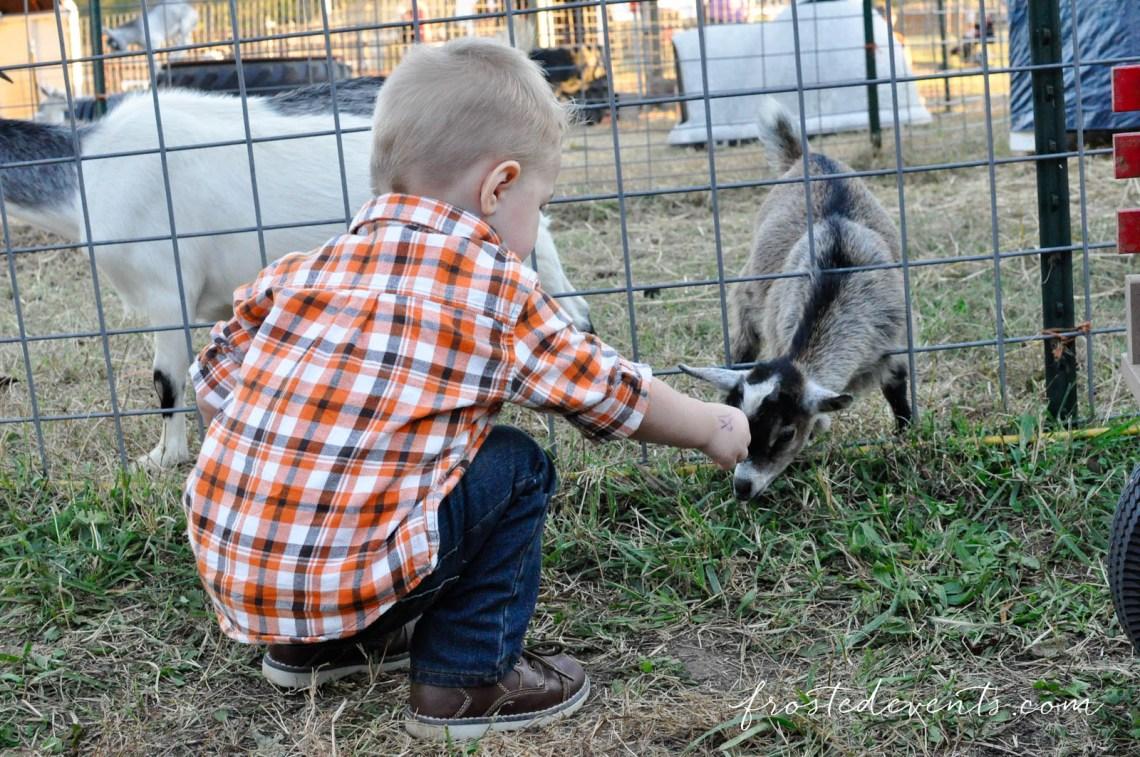 Washington-DC-Fun-with-Kids-Kids-Events-Harvest-Days-Belvedere-Plantations