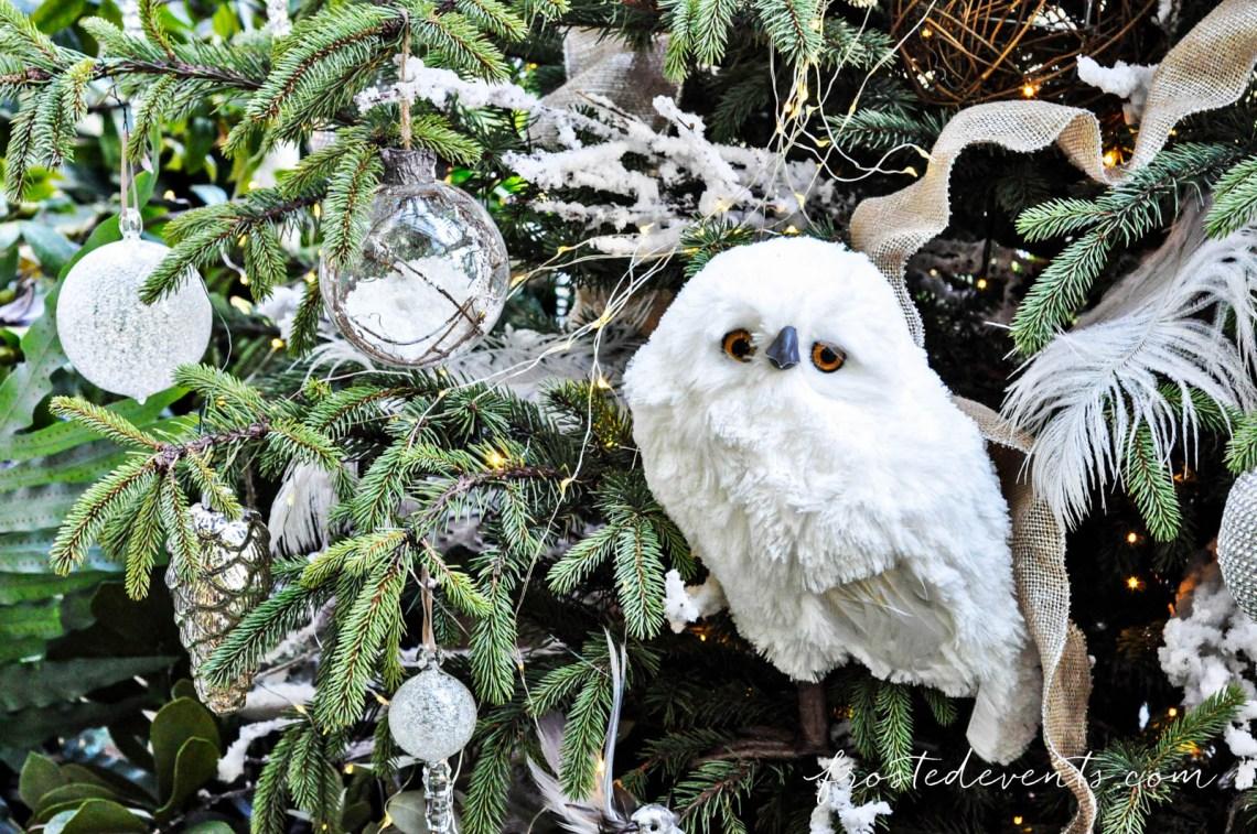 Washington DC Attractions- Christmas at the US Botanic Gardens