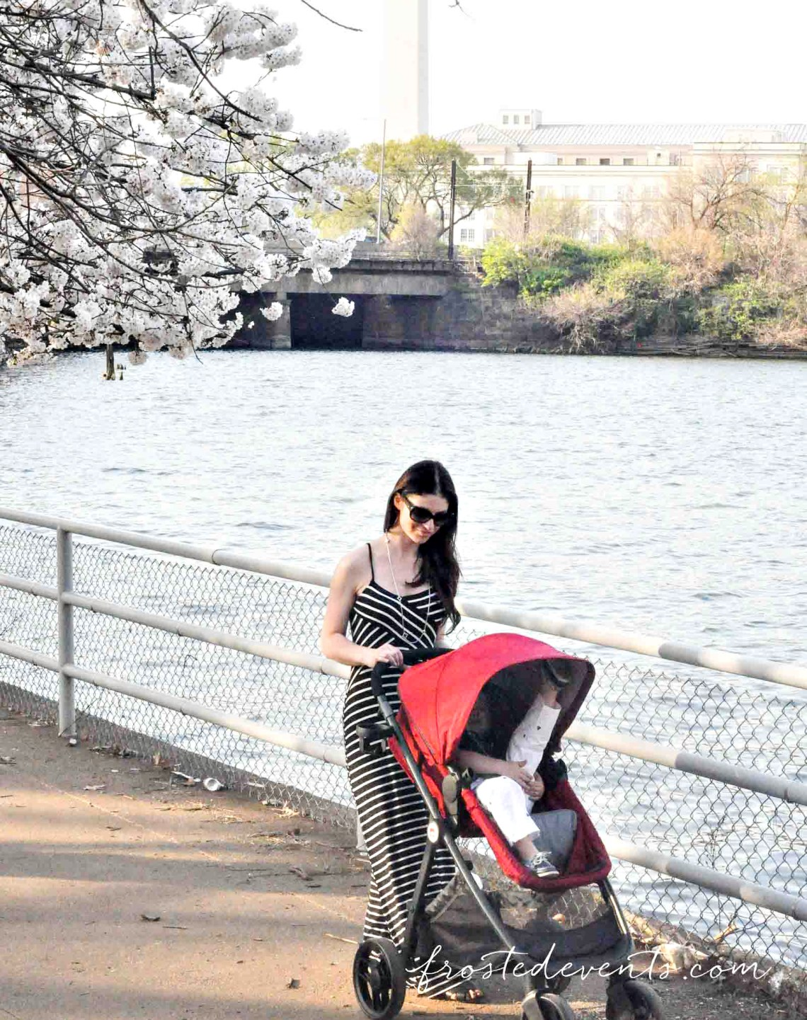 GB Lyfe Stroller Review Best Stroller 2016 DC Cherry Blossoms with Kids
