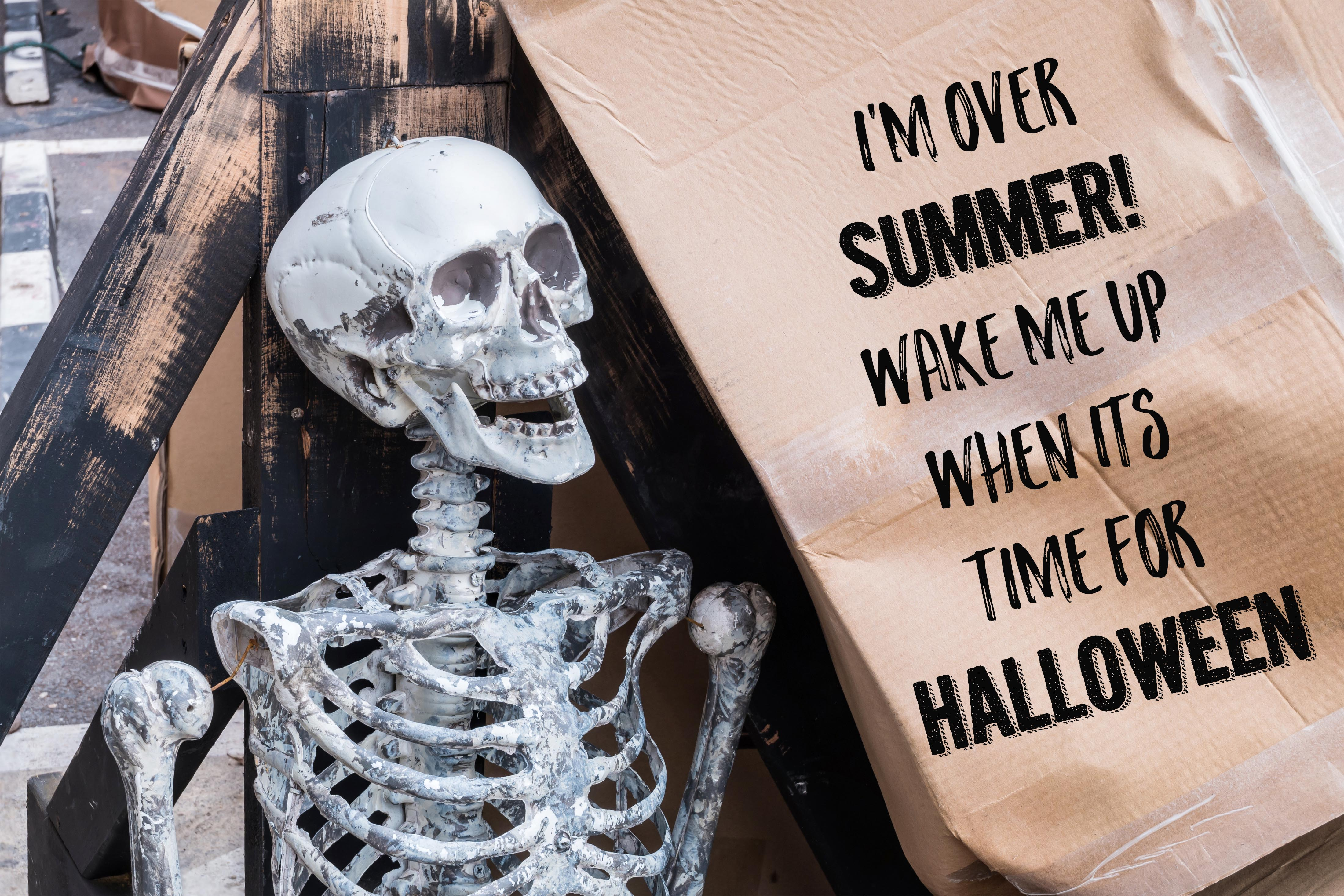 Halloween Memes - Hilarious Pics to Share this Hallow Day