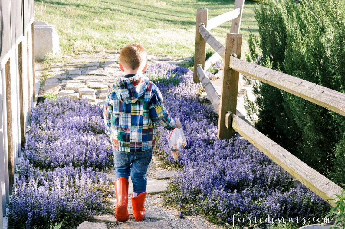 Seasonal Allergies Medicine for Kids Childrens Allergy Relief Symptoms Claritin via Misty Nelson mom blogger frostedmoms.com @frostedevents