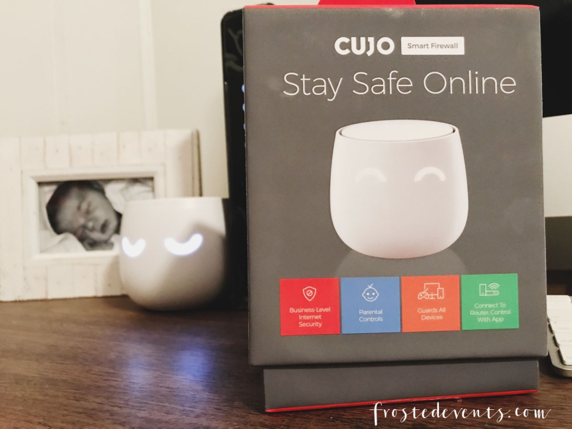Best Firewall for Home Network Security -- technology blogger Best Buy influencer Misty Nelson, frostedblog