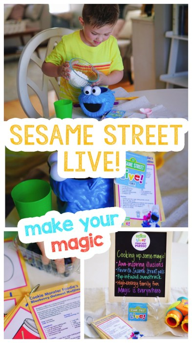Sesame-Street-Live-show-preschool-early-education-kidsPhoto Jun 26, 1 05 10 PM