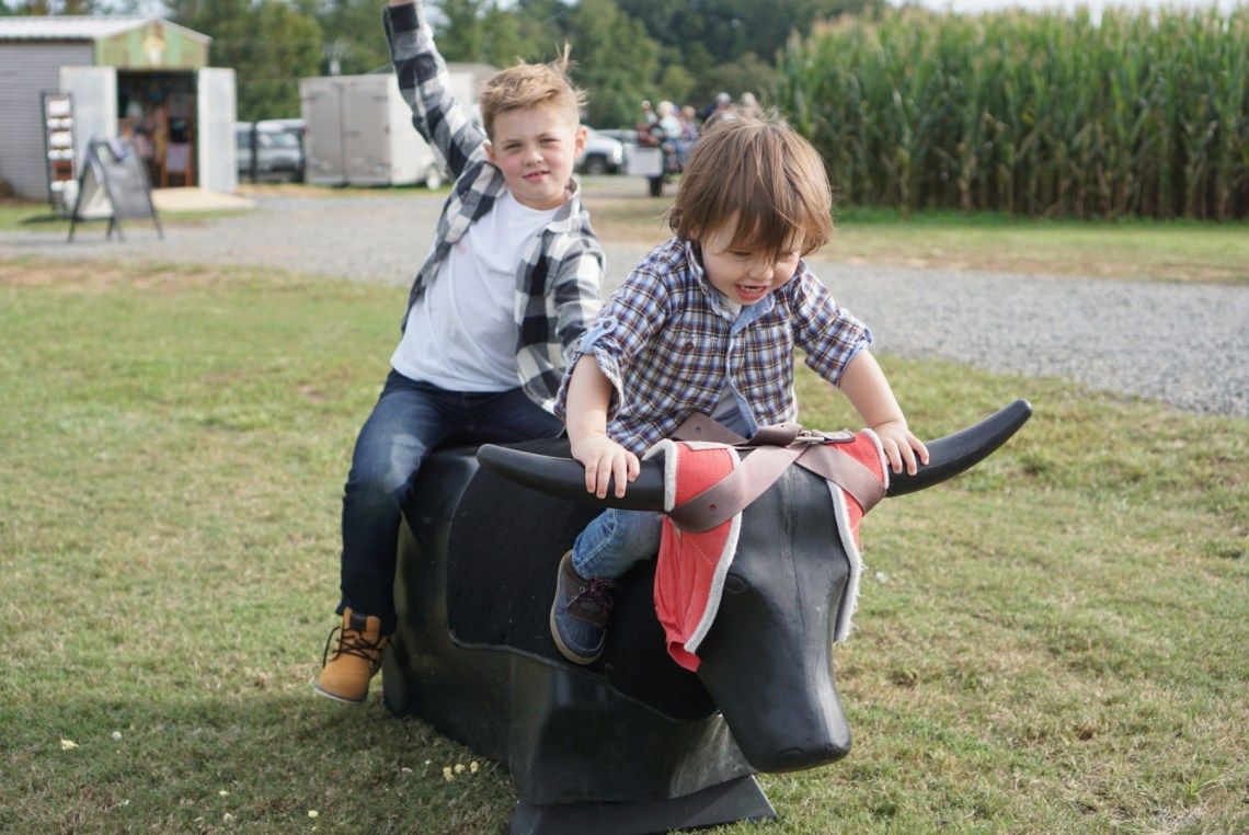 Corn Mazes in NC - Pumpkin Patches and Fall Things to Do - North Carolina - Alpha and Omega - bull rides
