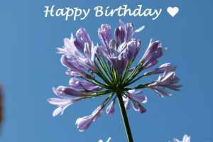 Gluckwunsche Zum Geburtstag Und Gottes Segen Ich Wunsche Zum