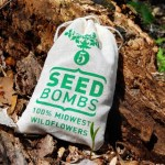 midwest-seed-bombs
