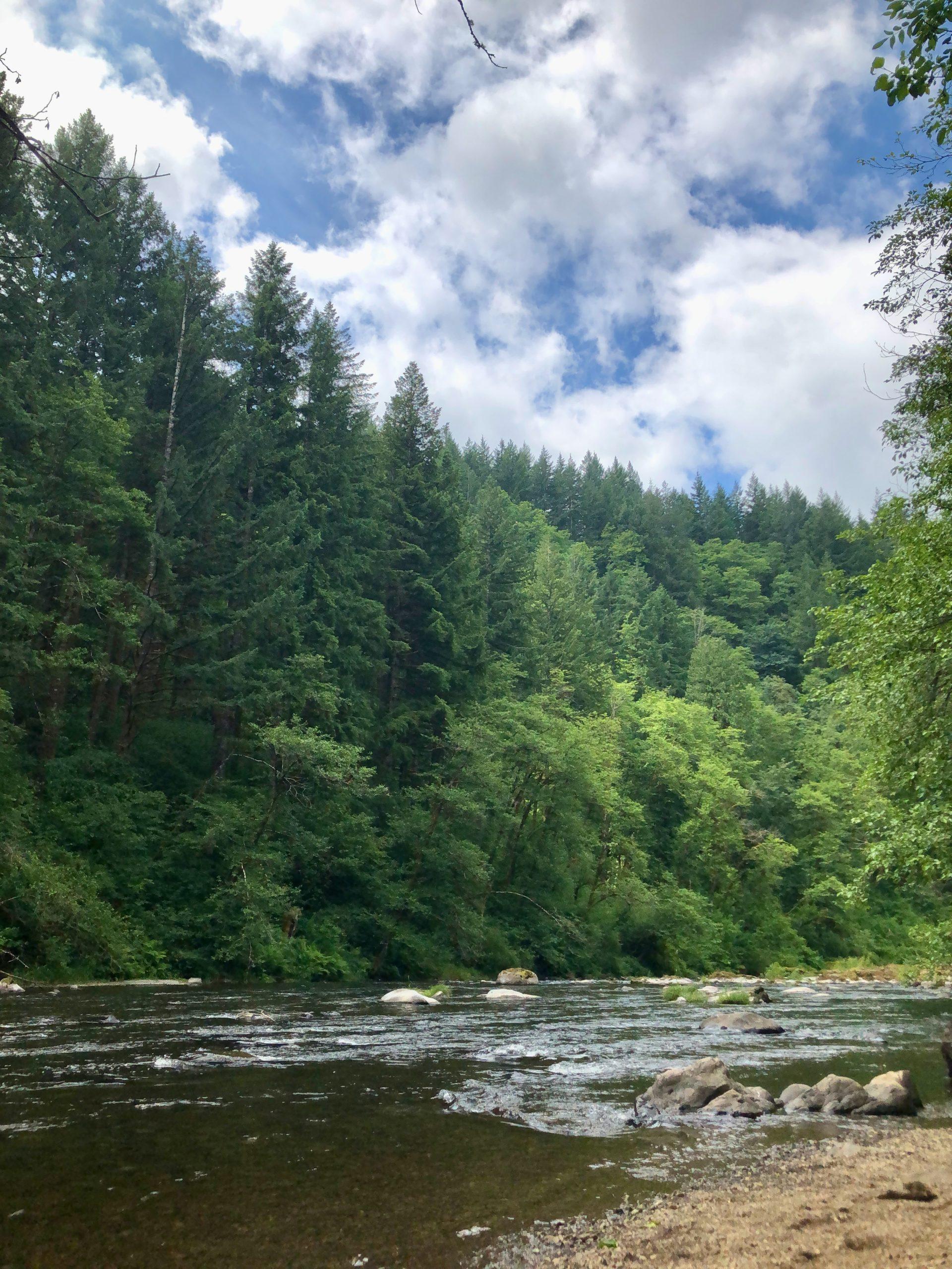 Moulton Falls Hike East Fork Lewis River