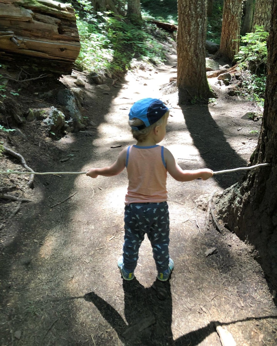 None shall pass - trail games for toddlers while hiking.