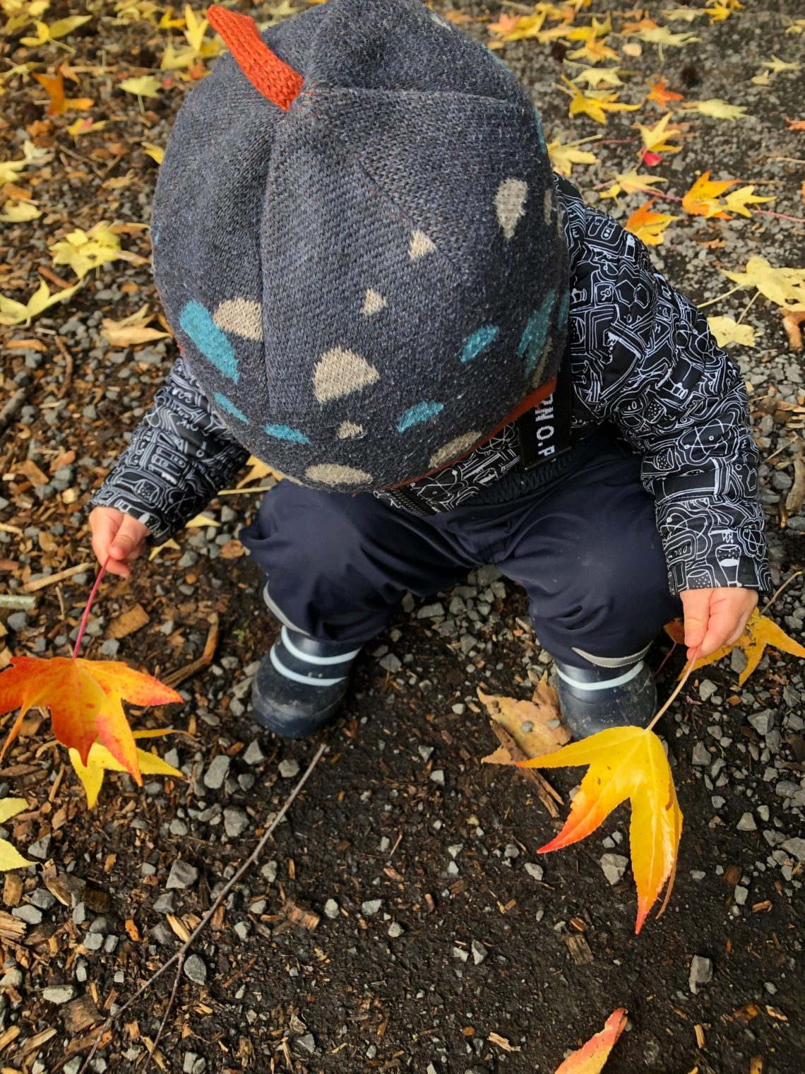 Toddler playing in colorful fall leaves