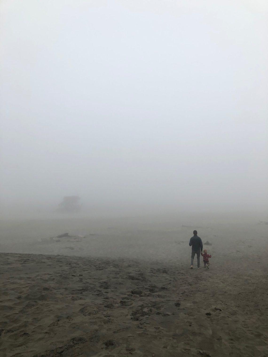 Peter Iredale Fog at Oregon coast - Fort Stevens camping