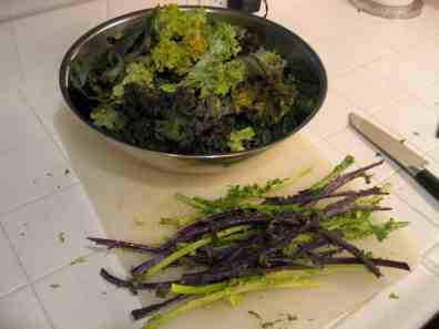 Kale and stems separated