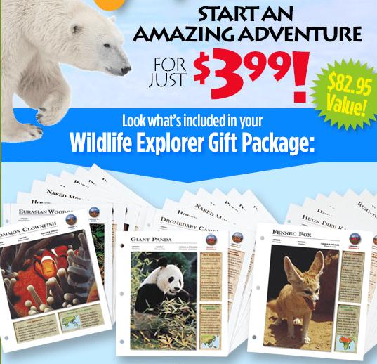 wildlife explorer package