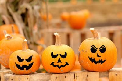 pumpkin pick a face set
