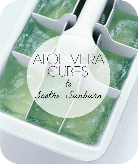 aloe-vera-ice-cubes-smaller