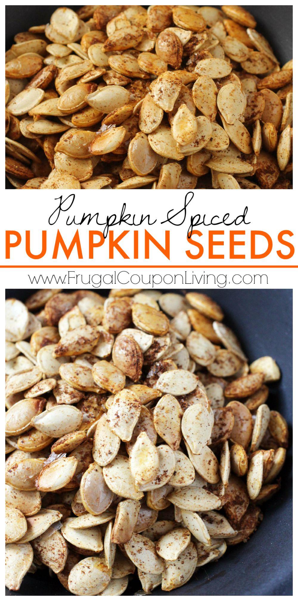 Pumpkin Spiced Pumpkin Seeds on Frugal Coupon Living