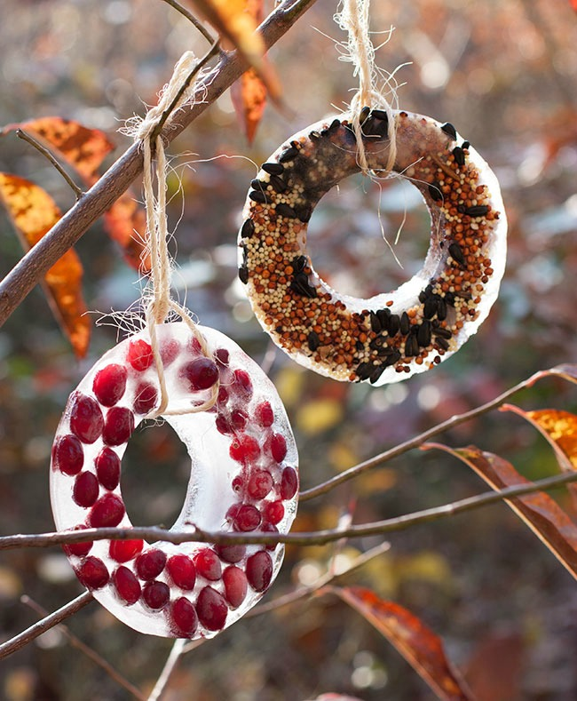 bird-seed-ornament-smaller