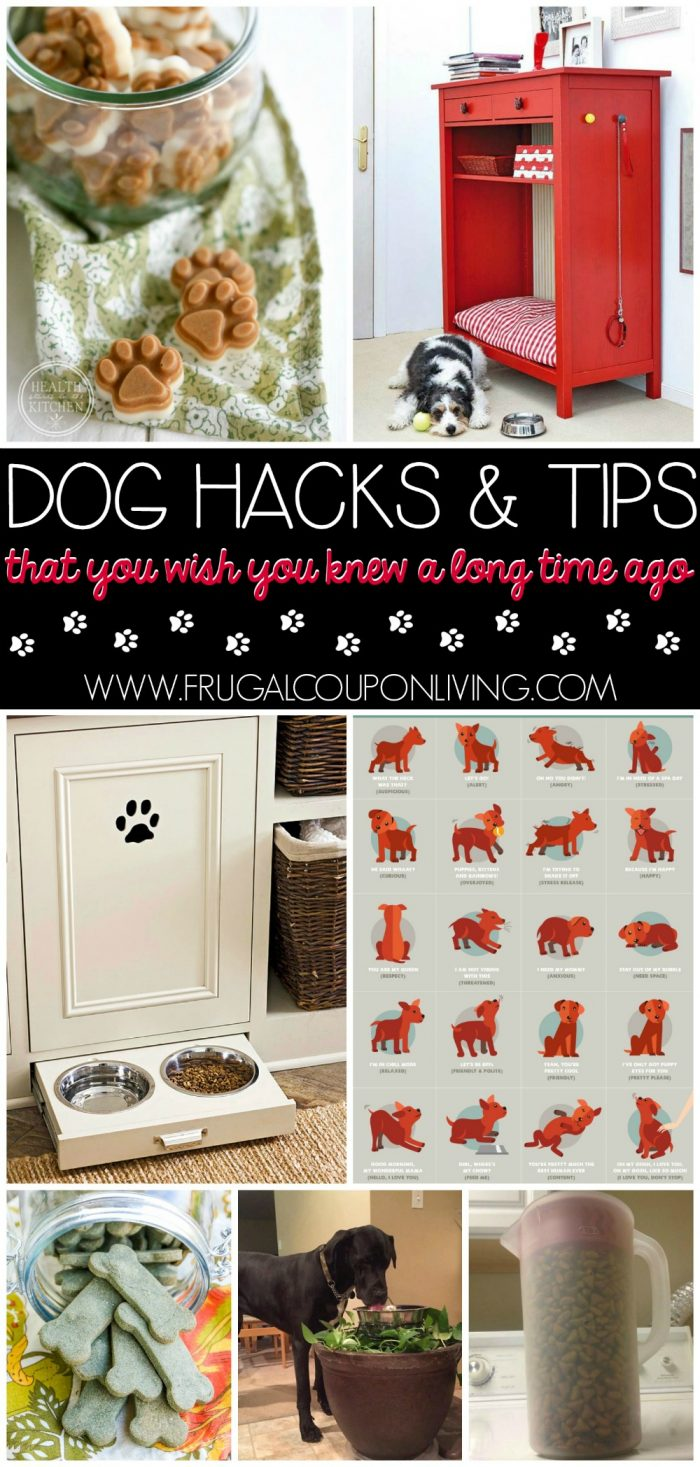 Dog-hacks-tips-frugal-coupon-living