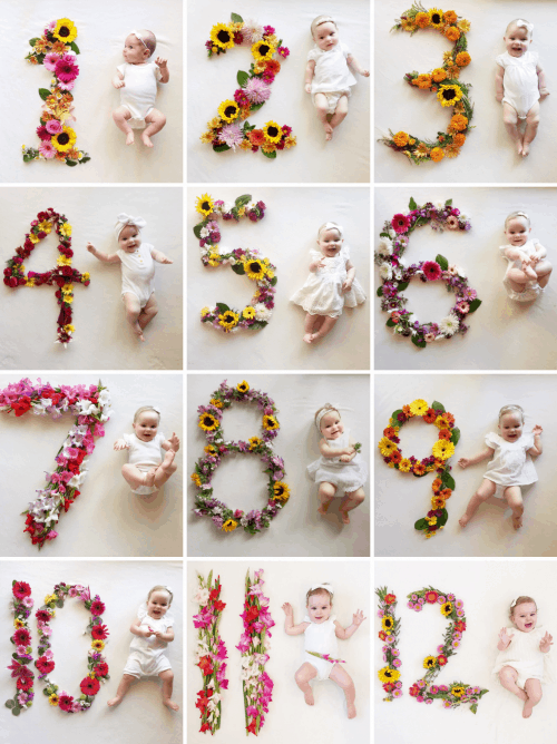 Flower-Number-Monthly-Baby-Photos
