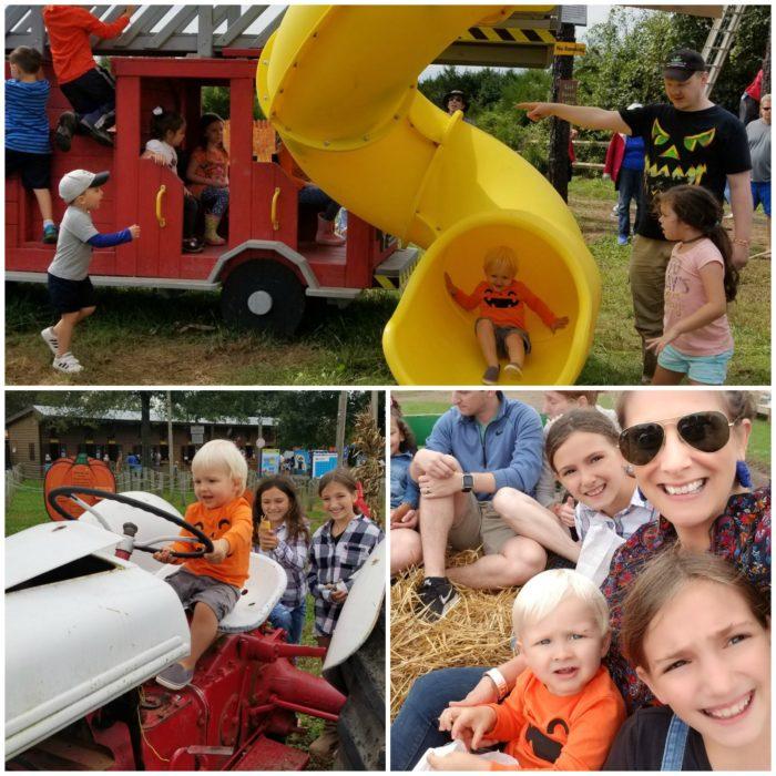 Cox Farm Fall Festival Attractions