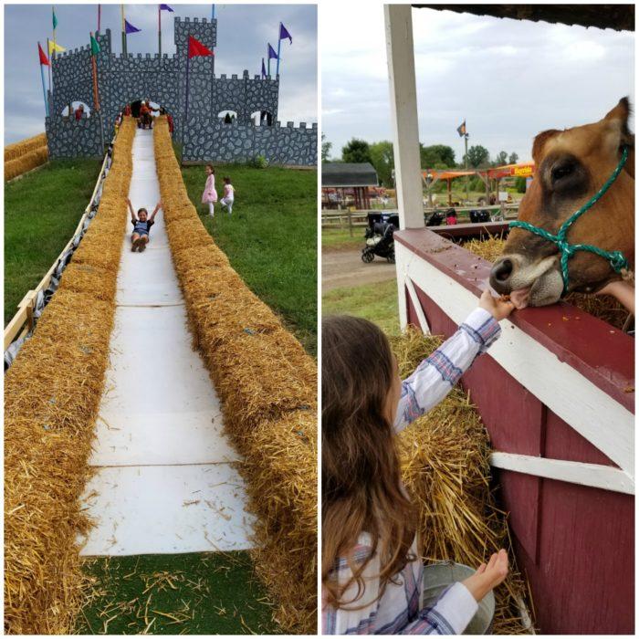 Cox Farm Fall Festival Slide and Farm Animals
