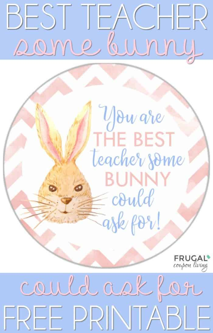 Best Teacher Some Bunny Could Ask For Printable