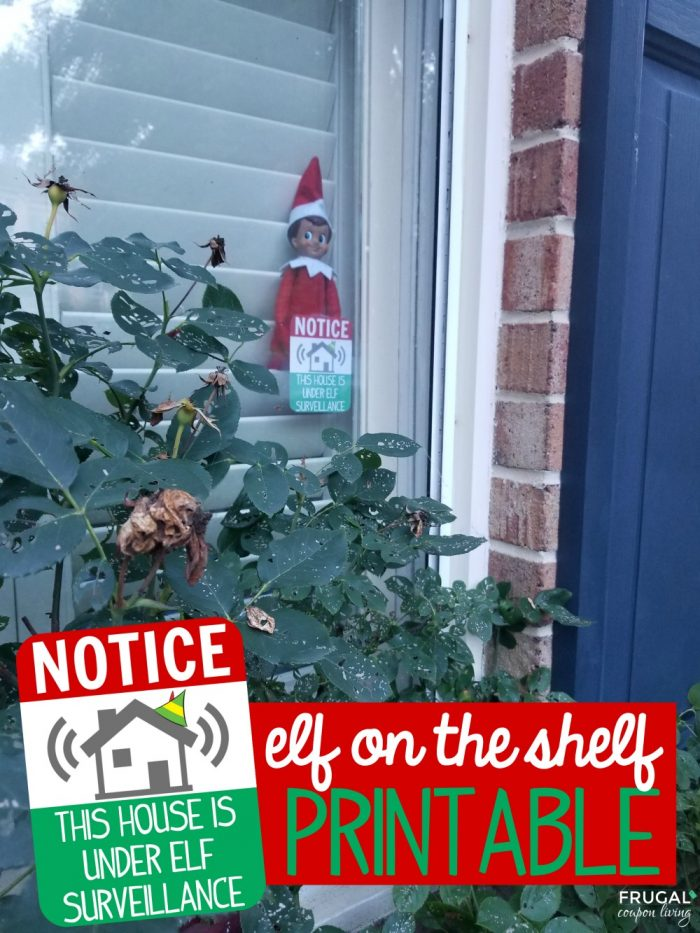 Elf of the Shelf Surveillance Printable
