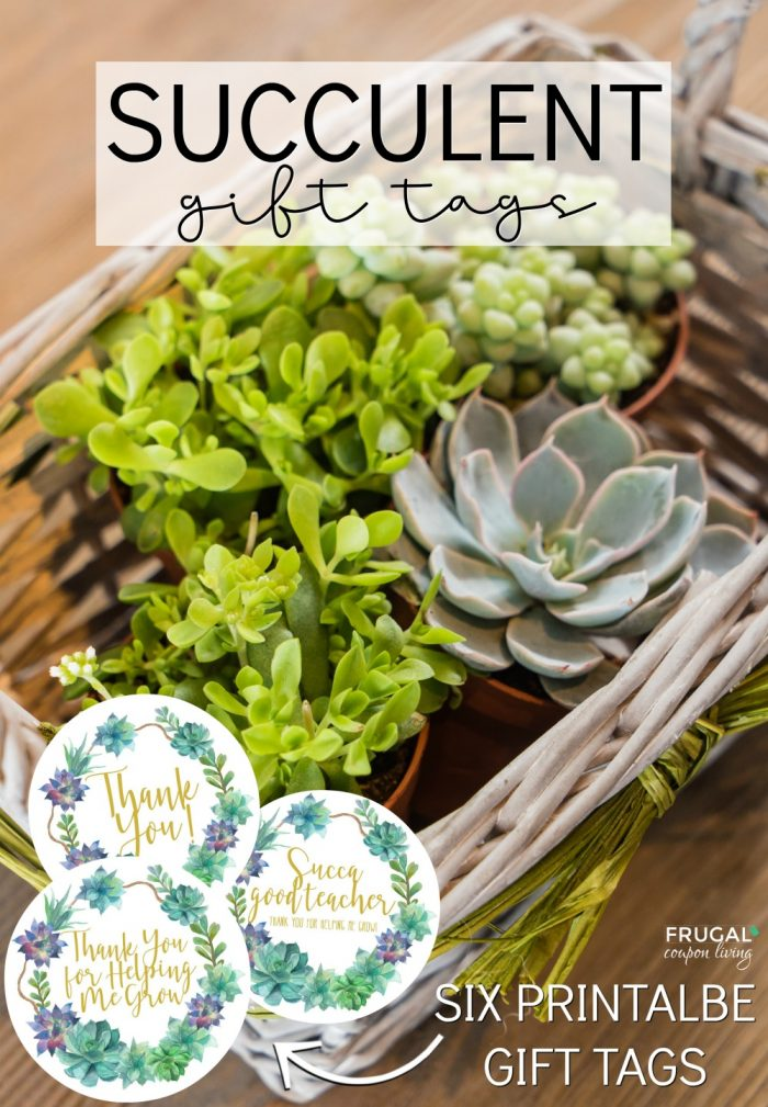 succulent gift tags and gift box frugal coupon living