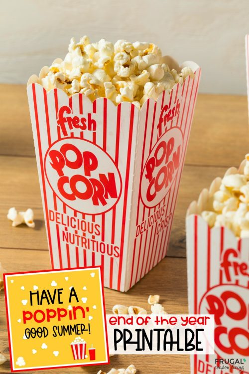 Have a poppin good summer popcorn end of the year gift