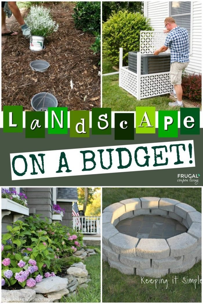 DIY Backyard Landscape Hacks and Tips on a Budget