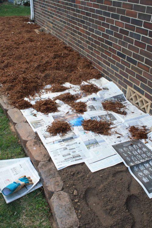 Flower Bed Hack for Weeds