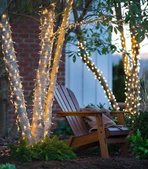 Christmas Lights in the Backyard