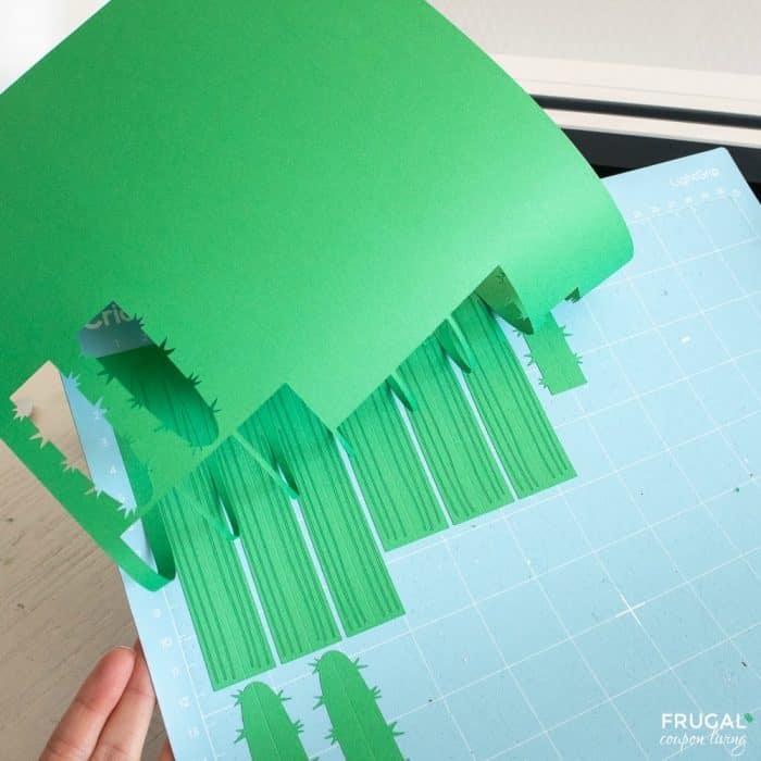 cricut design space cardstock paper cactus