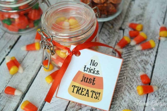 No Tricks Just Treats Halloween Mason Jar Gift