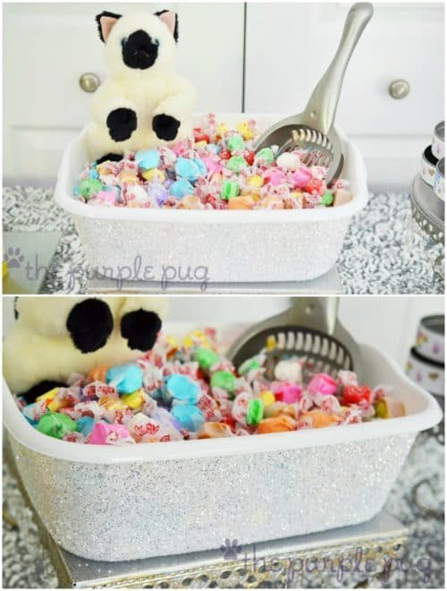 Cat Party Ideas | Kitty Litter Bucket with Candy