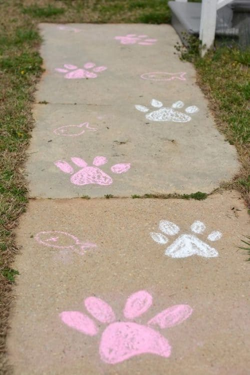 Sidewalk Chalk Art with paw prints - Cat Party Ideas