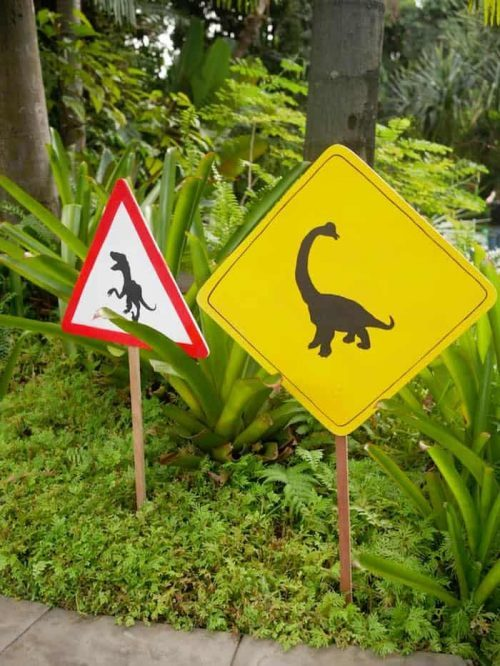 Dinosaur Crossing Party Signs & Party Decor