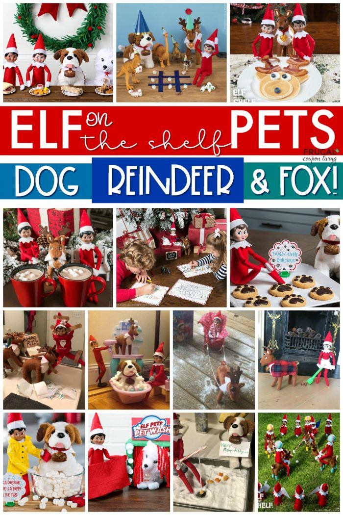 Elf on the Shelf with Elf Pets Ideas
