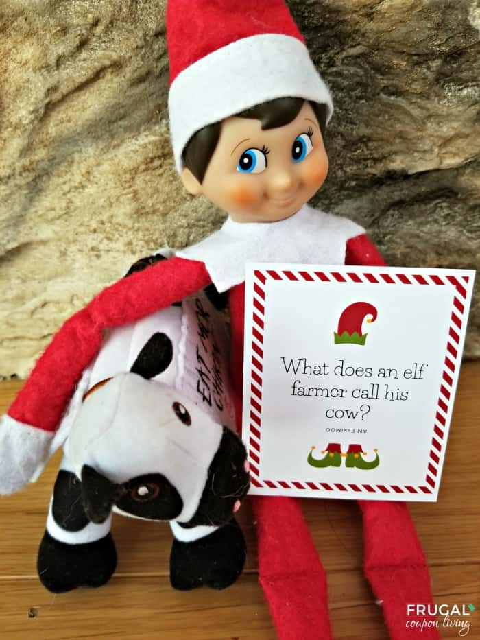 Cow Elf on the Shelf Jokes - 30 Days of Christmas Jokes Printables