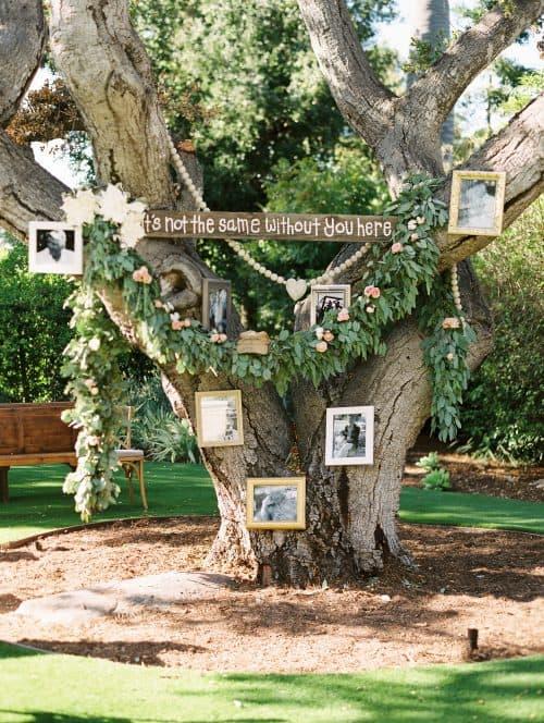 Wedding Memorial Ideas Tree with Photographs + Cheap Wedding Decor