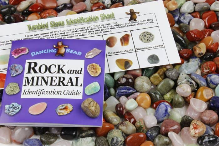 Tumbled Polished Natural Gem Stones | Rock Party Ideas