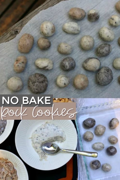 No Bake Rock Cookies + Rockin' Rock Party Ideas