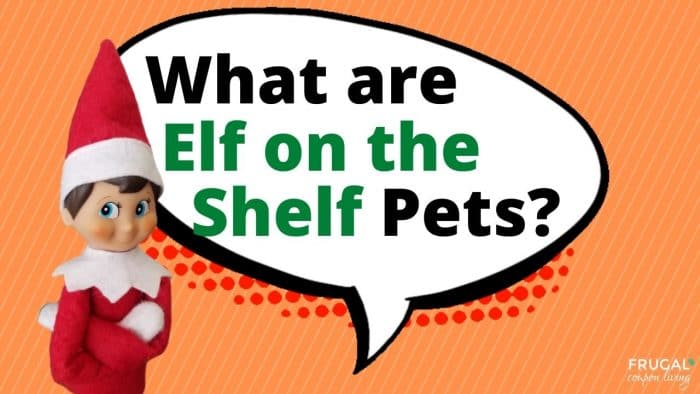 Elf Questions - What are Elf on the Shelf Pets?