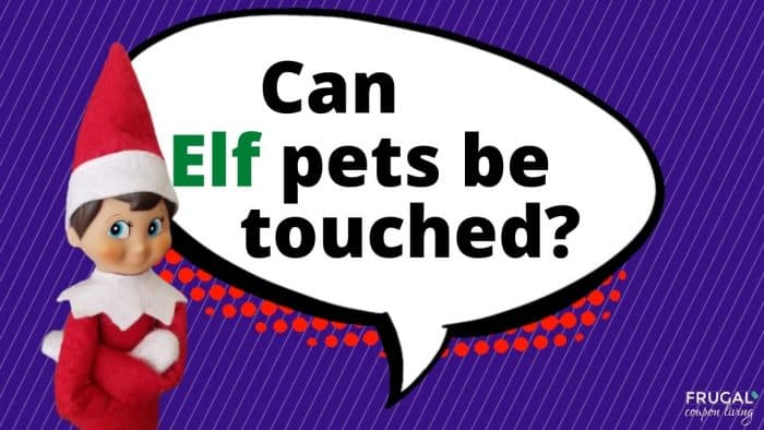 Elf Questions - Can Elf pets be touched?