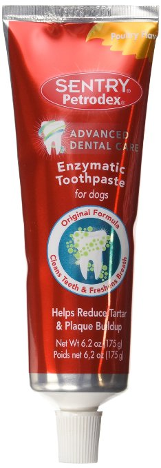 Amazon: Petrodex Enzymatic Toothpaste Dog Poultry Flavor & Dog Toothbrushes!