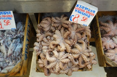 tray of small octopus in the Athens fish market