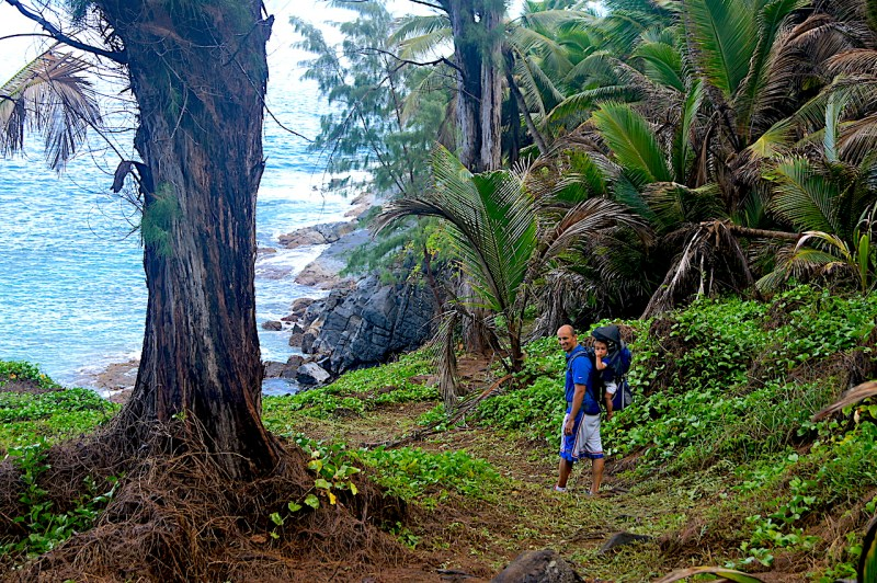 Silhouette Island Hike With Kids