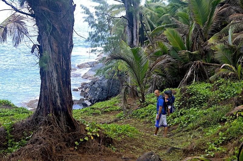 Silhouette Island Hike With Kids